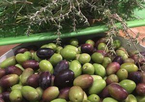 huile d olive rostan