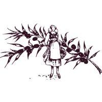Logo-chocolaterie-Marcellin